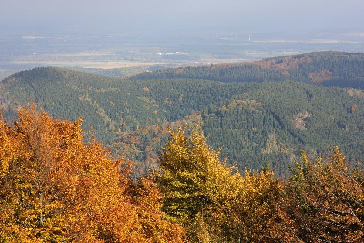 Herbst vom Inselsberg